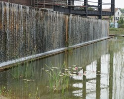 KVS-Wassergärten-DSC01310