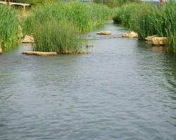 KVS-Wassergärten-DSC01334