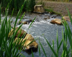 KVS-Wassergärten-DSC01418