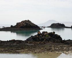 Kanarische Inseln DSC05608