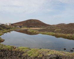 Kanarische Inseln DSC05612