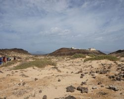 Kanarische Inseln DSC05625