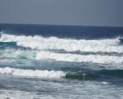 Kanarische Inseln DSC06034