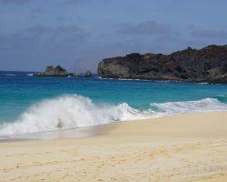 Kanarische Inseln DSC06252