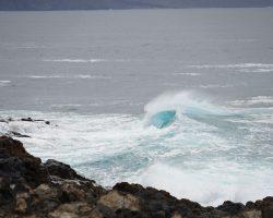 Kanarische Inseln DSC06395