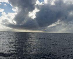 Kanarische Inseln DSC06701