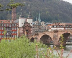 Heidelberg 2017 (15)