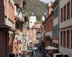 Heidelberg 2017 (20)