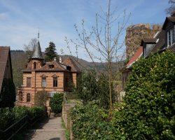 Heidelberg 2017 (25)