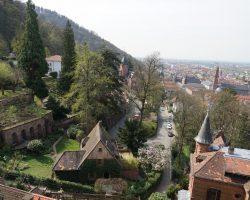Heidelberg 2017 (26)