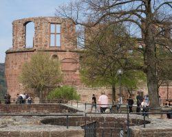 Heidelberg 2017 (30)