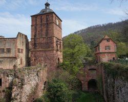 Heidelberg 2017 (37)