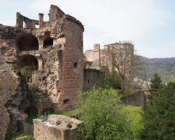 Heidelberg 2017 (39)