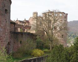 Heidelberg 2017 (40)
