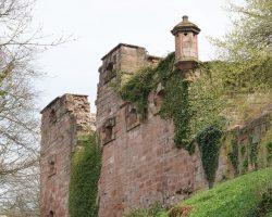 Heidelberg 2017 (44)