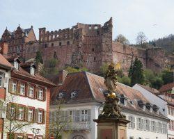 Heidelberg 2017 (45)